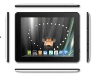 Tablet PC 9.7 Inch IPS TFT LCD Capacitive Touch 1024*768 (M974Q)