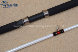 Free Shipping Japanese Nano Carbon Jigging Fishing Rod pictures & photos