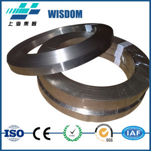 Nickel Alloy Incoloy 901 Strip for Sale pictures & photos