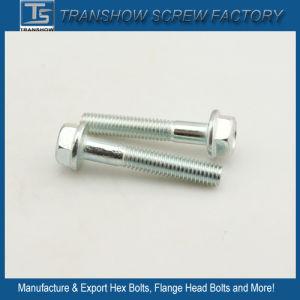 American Standard SAE J429 Gr2 Flange Head Screws pictures & photos