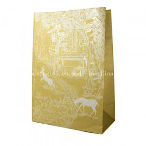 Custom Hot Sale Kraft Shopping Paper Bag Fk-171 pictures & photos