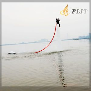 China New Style Professional Flyboard with Patent pictures & photos