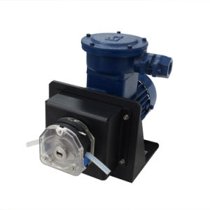 AC Explosion-Proof Motor Peristaltic Pump pictures & photos