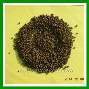 Competitive Price of DAP Fertilizer pictures & photos