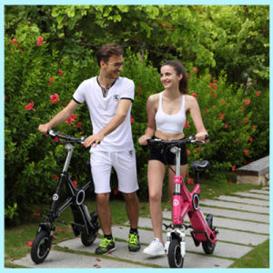 Brushless Lithium Battery 36V 250W Folding Electric Bike pictures & photos