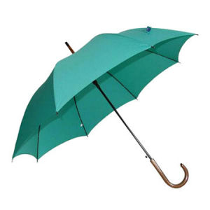 OEM High Quality-New-Design- Straight Umbrella, Wood Handle (BR-ST-194) pictures & photos