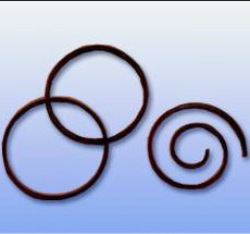 Compressor Seals pictures & photos