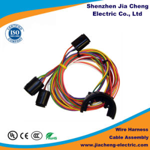 Wire Harness Customized Engine Best Sale OEM Custom pictures & photos