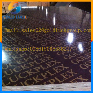 12mm 15mm 18mm Construction Plywood pictures & photos