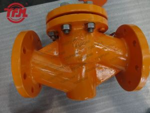 PFA Lined Straigth Lift Check Valve pictures & photos