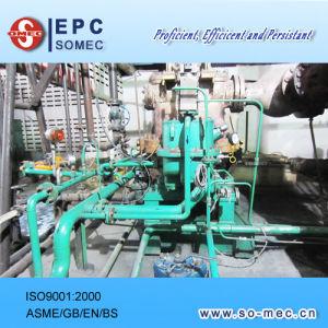 Palm Plantation Power Plant Steam Turbine Generator Supply pictures & photos