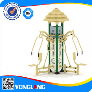 Outdoor Fitness Body Bulilding Equipment for Adults (YL-JS016) pictures & photos