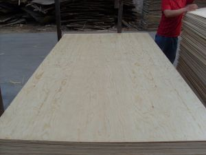 Pine Face and Back BB/CC Grade Poplar Core Plywood pictures & photos