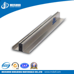 Aluminum Control Joint with EPDM Rubber Insert pictures & photos