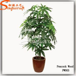 Wholesale Indoor Decoration Fake Bonsai Plant Artificial Tree pictures & photos