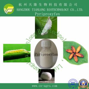 Highly Effective Insecticide Pyriproxyfen (95%TC, 5%EW, 5%ME, 10% EC, 5%G) pictures & photos
