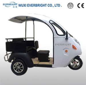 Electric Tricycle with Cargo