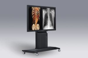 (SUPER84T-AIO) Integrated Grayscale&Colour Medical Display for Group Consultation pictures & photos