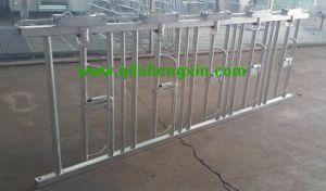 Durable Using Cow Farm Feeding Equipment