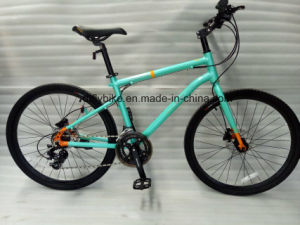 "Mountain Bike: 26""Meili, Micro, 16s pictures & photos"