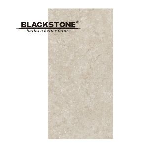 600X1200mm Roma Impression Series Ceramic Thin Tile pictures & photos