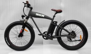 Harley Fat Tire 26inch Mountain Electric Bicycle pictures & photos