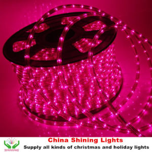 Classic Traditional Christmas Holiday LED Rope Light in Varis Colors Good Quality Cheap Price pictures & photos