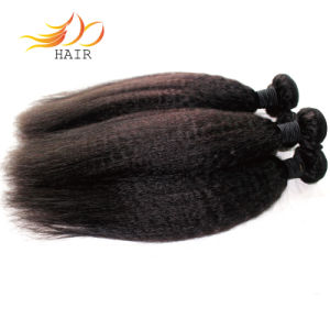 Tabgle Free Shedding Free Kinky Straight 100% Indian Virgin Hair Weave pictures & photos