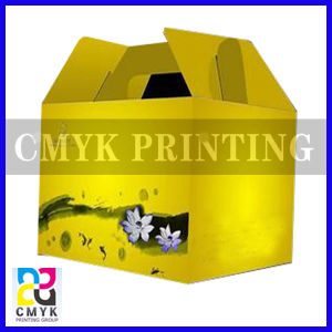 Delivery Box with Handle pictures & photos