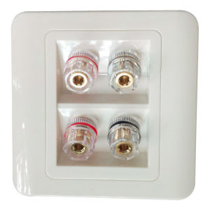 Home Audio and Subwoofer Socket (DH-082-1213)
