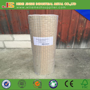 Building Use Welded Mesh/Protecting Welded Mesh/Galvanized Welded Mesh Made in China pictures & photos