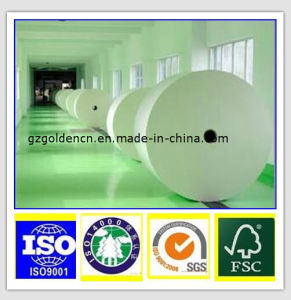 C1s Ivory Board/Gc2/Sbs/Paperboard in Sheet 350GSM 300GSM 270GSM 250GSM 230GSM 210GSM 190GSM pictures & photos
