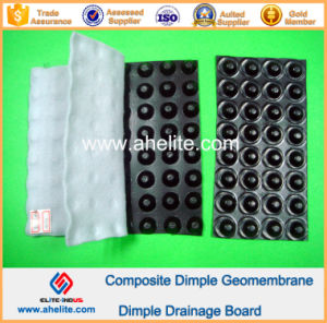 HDPE Dimple Geomembrane for Dam pictures & photos