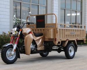 Gas Powered 200cc Cargo Tricycle with EEC pictures & photos