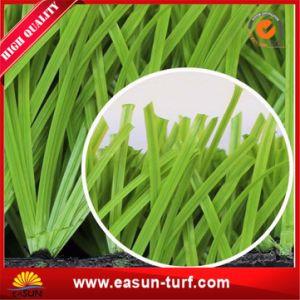 Artificial Grass Carpets for Football Stadium Artificial Grass Football pictures & photos