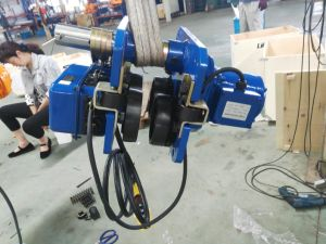 Liftking Brand Manufacturer High Quality 220V-690V Double Speed Electric Chain Hoist pictures & photos