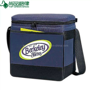 Wholesale Hot Sale Insulated High Quality Trendy Beach Lunch Cooler Bags pictures & photos