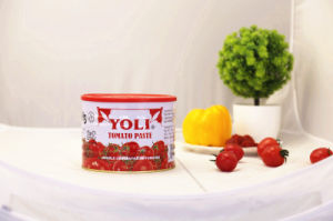 Canned Tomato Concentrate Iran Yoli Brand pictures & photos