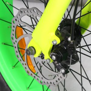 20inch Fat Tire Electric Bicycle pictures & photos