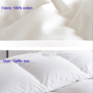 Goose or Duck Down Comforter Chinese Furniture pictures & photos