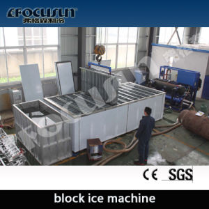 Containerized Brine System 20 Tons Per Day Ice Block Machine pictures & photos