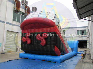 Commercial Grade Inflatable Pirate Ship Slide with Cheap Price pictures & photos