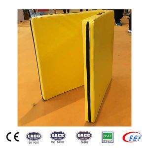 Best Shenzhen Manufacturer PE or EPE Gymnastic Mats pictures & photos