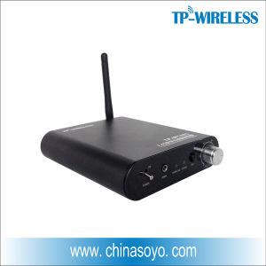 2.4GHz Digital Wireless Power Amplifier for Wireless Surround Sound System pictures & photos
