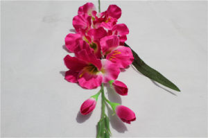 Cheap Wholesale Plastic Artificial Phalaenopsis Flowers Fake Orchid for Wedding pictures & photos