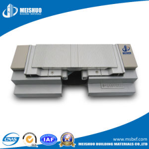 Modular Heavy Duty Building Expansion Joint System pictures & photos