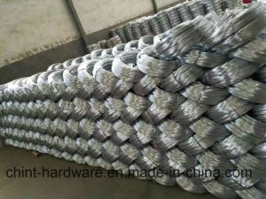 Electro/Hot Dipped Galvanized Iron Wire Wire Mesh pictures & photos
