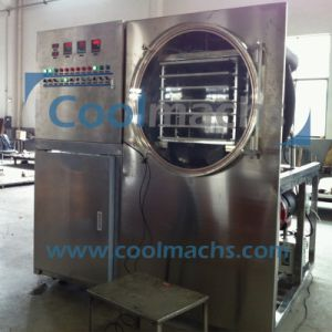 Mini Freeze Drying Machine/Lab Vacuum Freeze Dryer pictures & photos