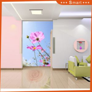 Hot Sales Customized Flower Design 3D Oil Painting for Home Decoration Model No.: Hx-5-059 pictures & photos