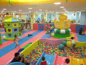 Funny Tree Indoor Playground Series Tube Slide pictures & photos